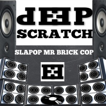 DS-SLAPOP-MR-BRICK