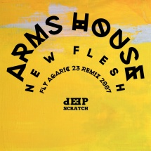 ARMS HOUSE - FLYAGARIC REMIX