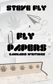 flypapers-kindle-v3