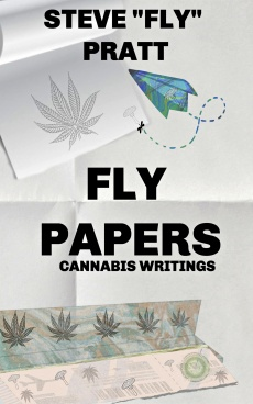 flypapers-kindle-V5