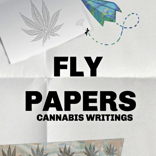 flypapers-kindle-V5