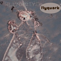 FLYQUARK-ILLNARTY