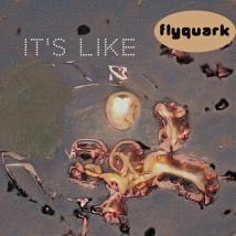 FLYQUARK-ITS-LIKE