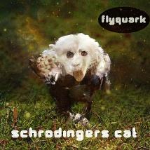 FLYQUARK-SCHRODINGERS-CAT