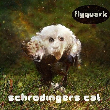 FLYQUARK-SCHRODINGERS-CAT