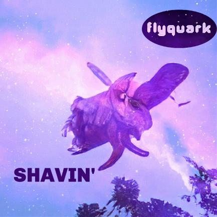 FLYQUARK-SHAVIN